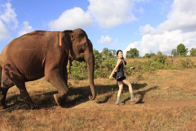 柬埔寨背包行(2) 與大象漫步